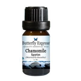 ChamomileEgyptian