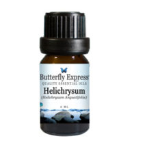 HelichrysumA
